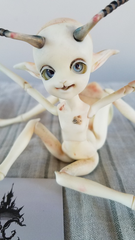Doll Chateau Ant project